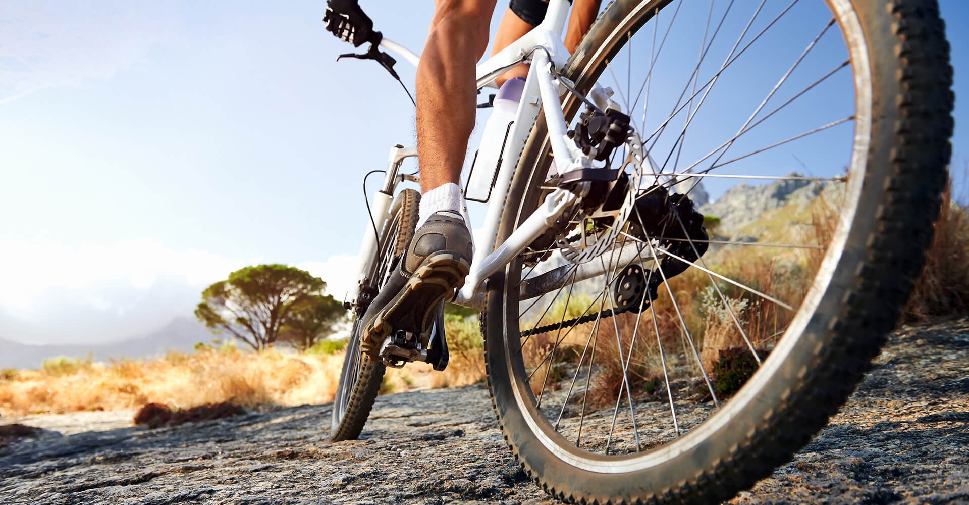 Большой выбор велосипедов!